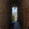 Torre di Palme – Traversa 5