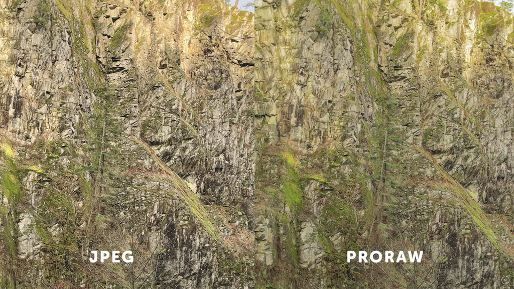 ProRAW vs JPEG